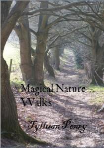 Magical Nature Walks